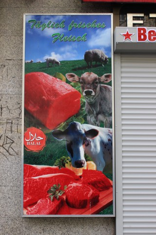 cows sonnenallee